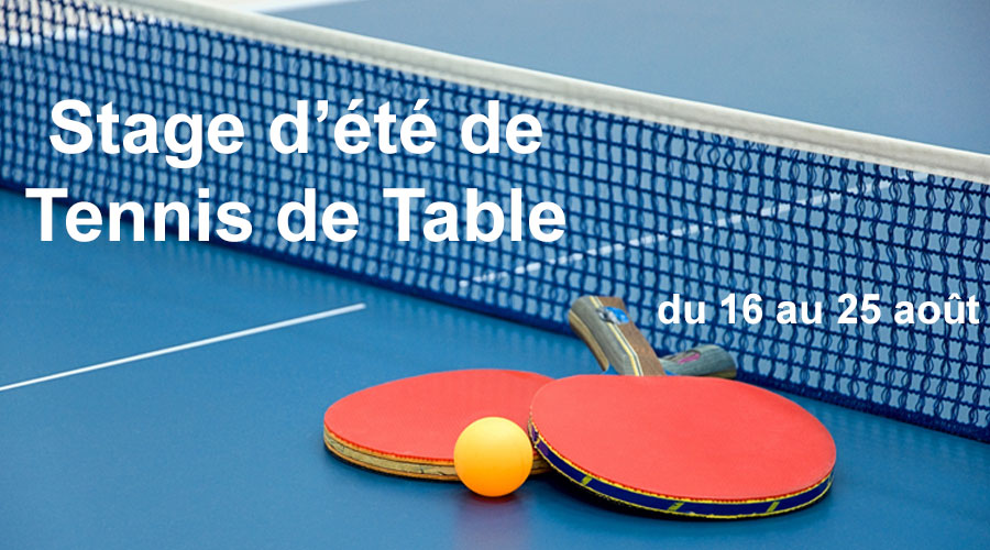hotel ibis quimper stage tennis table